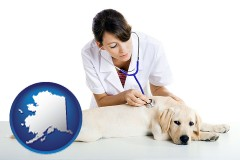 alaska map icon and a female veterinarian caring for a Labrador retriever