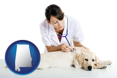 alabama map icon and a female veterinarian caring for a Labrador retriever