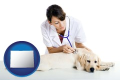 colorado map icon and a female veterinarian caring for a Labrador retriever