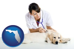 florida map icon and a female veterinarian caring for a Labrador retriever
