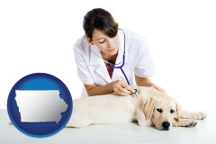 iowa map icon and a female veterinarian caring for a Labrador retriever