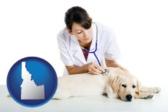 idaho map icon and a female veterinarian caring for a Labrador retriever