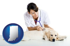 indiana map icon and a female veterinarian caring for a Labrador retriever