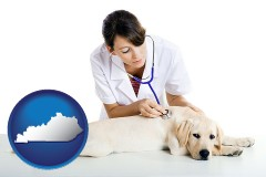 kentucky map icon and a female veterinarian caring for a Labrador retriever