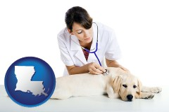 louisiana map icon and a female veterinarian caring for a Labrador retriever