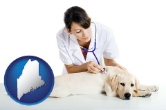maine map icon and a female veterinarian caring for a Labrador retriever