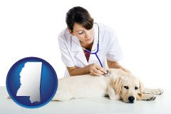 mississippi map icon and a female veterinarian caring for a Labrador retriever