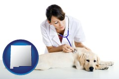 new-mexico map icon and a female veterinarian caring for a Labrador retriever