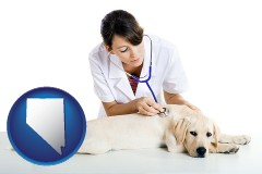 nevada map icon and a female veterinarian caring for a Labrador retriever