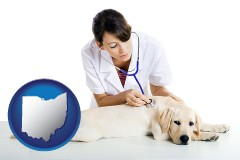 ohio map icon and a female veterinarian caring for a Labrador retriever