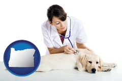 oregon map icon and a female veterinarian caring for a Labrador retriever