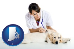 rhode-island a female veterinarian caring for a Labrador retriever
