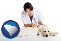 south-carolina map icon and a female veterinarian caring for a Labrador retriever