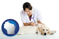 wisconsin map icon and a female veterinarian caring for a Labrador retriever