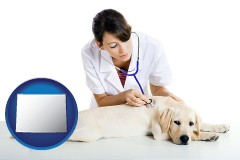 wyoming map icon and a female veterinarian caring for a Labrador retriever